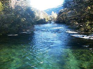 rio Manso