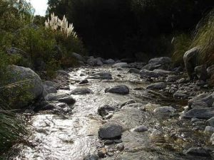 Arroyo Piedra Blanca