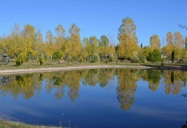 Cabaña Complejo la Finca - San Rafael y Valle Grande