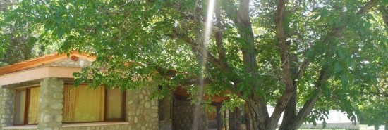 Cabaña La Moradita-Nature&Resort - Nono