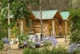 Cabaña Camping Bosque Encantado - Pehuencó