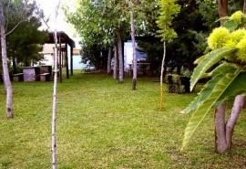 Cabaña Las Palmeras - Claromecó