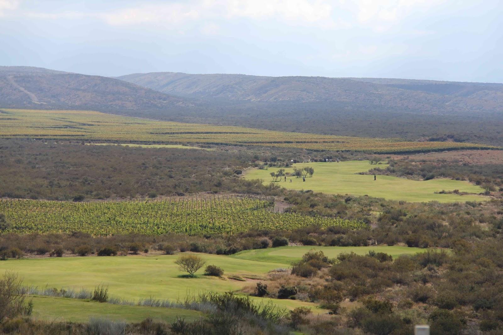 Circuito de Golf en los Caminos del Vino