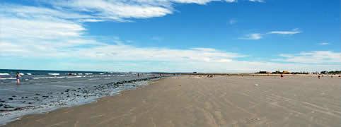 Actividades variadas en Playas Doradas