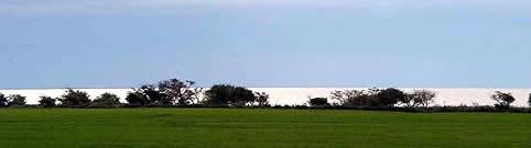 Punta Indio, variedad en la costa del Río de la Plata