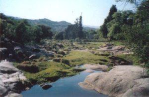 MinaClavero