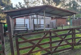 Cabaña Complejo GreLau - Monte Hermoso