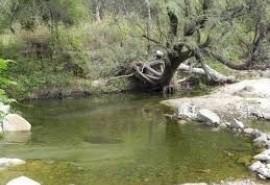 Cabaña Cabañas Aguada de La Quebrada - Potrero de los Funes