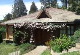 Cabaña dahlias del sur - Bariloche