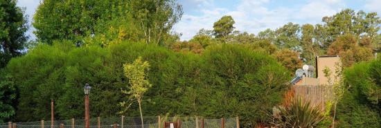 Cabaña Cabañas Los Arrayanes - Chascomús